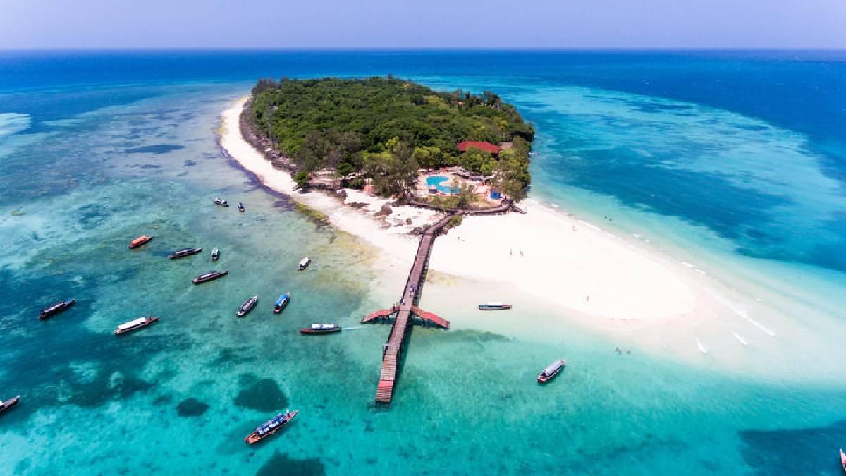 Survivor Tamil: Arjun Survivor Contestants List, Date, Time And Island