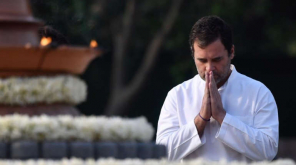 Resignation Queues up in Rahul Gandhi