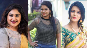 Bigg Boss Season 3 Contestants