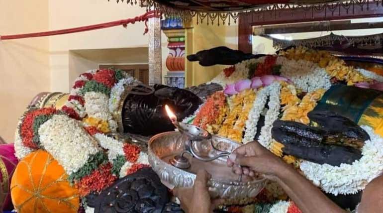 Kanchipuram Athi Varadar Darsan