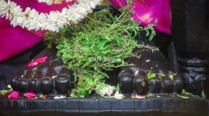 Lord Athi Varadar Darshan End in Two Days