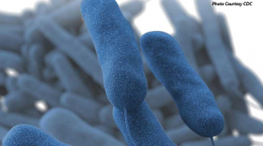 Legionnaires disease kills one in North Carolina