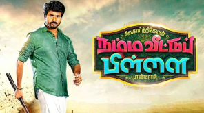 Sivakarthikeyan previous two flops have repercussions on Namma Veettu Pillai