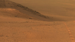 Life on Mars: Researcher Finds Insect on Mars