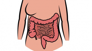 New Bacterial Species Found Causing Bowel Cancer