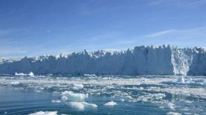 the Survival of Life on Earth During the Ice age
