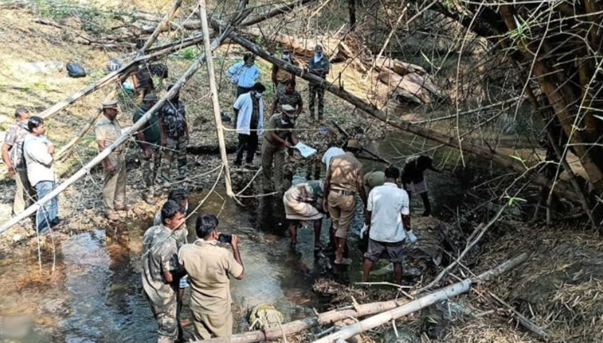 Tiger Carcass Found in Mudumalai