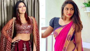 Shivani Narayanan, Bigg boss Tamil 4 contestant
